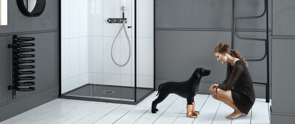 One black frame shower enclosure